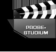 Icon Probestudium